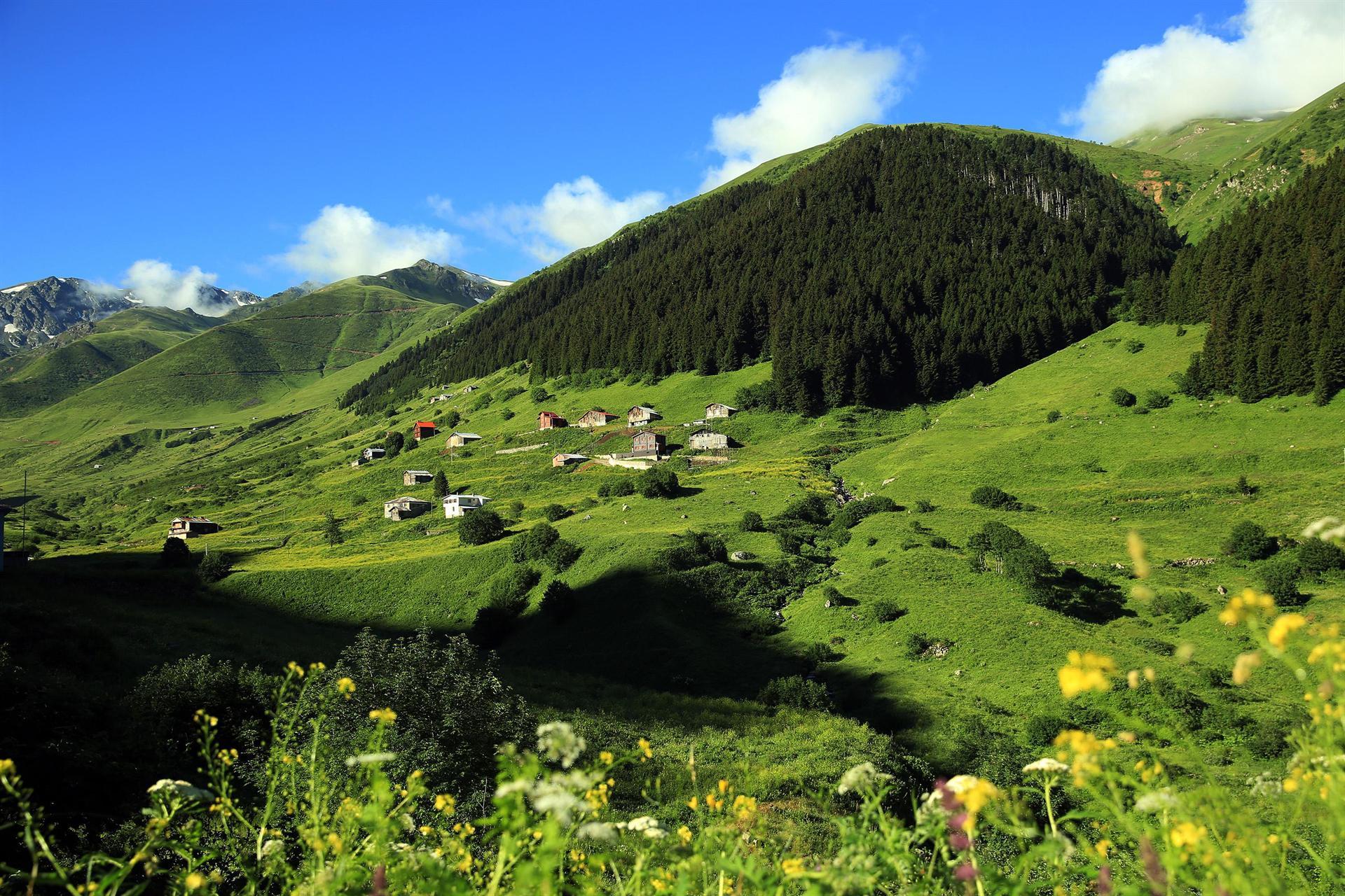 Doğu Karadeniz Bölgesi'ne son yıllarda başta Orta Doğu olmak üzere birçok ülkeden çok sayıda turist geliyor. Bölge, özellikle yaz aylarında yoğunlaşan ilgiyi karşılayamaz hale geldi.