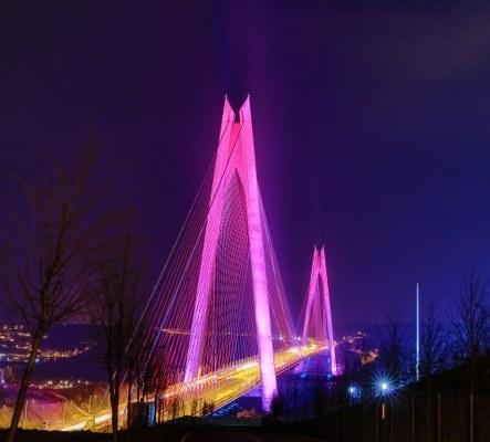 İstanbul'un sembol yapılarından 15 Temmuz Şehitler Köprüsü, Fatih Sultan Mehmet Köprüsü ve Yavuz Sultan Selim Köprüsü, Dünya Epilepsi Günü dolayısıyla mor ışıkla aydınlatıldı.