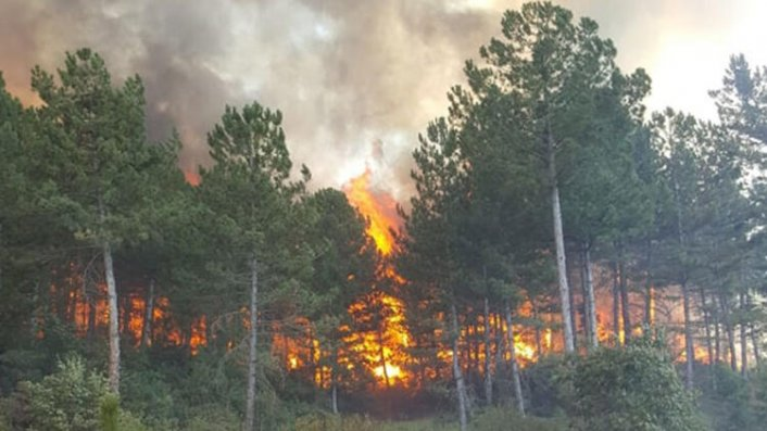 Korkutan orman yangını! - Son Dakika Güncel Haberler