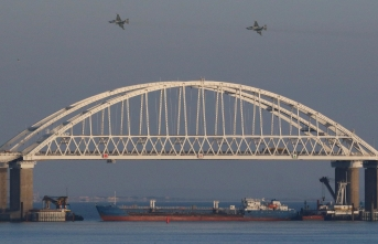 NATO'nun 29 ülkesinden Rusya'ya mesaj