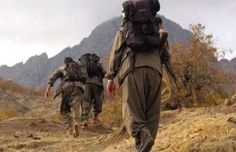 PKKPYD'de iç hesaplaşma: 2 terörist infaz edildi