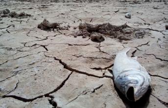 İran kuraklıkla karşı karşıya… 20 milyon kişi göç edebilir