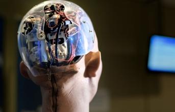 Yapay zekalı robot 24 çalışanı hastanelik etti