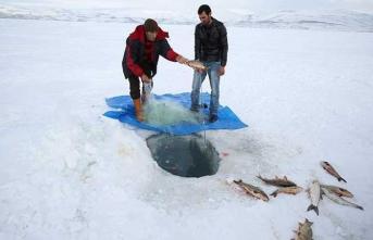 Dondurucu soğuklar nedeniyle balıkları Eskimo usulü avlıyorlar!