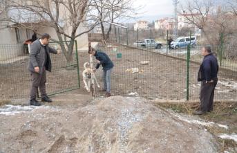 Köpeklerin öğrenciyi öldürdüğü ilçede ürküten görüntü