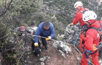 Dağ yamacında mahsur kalan keçiler kurtarıldı