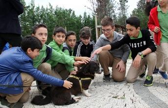 İBB'den çocuklara hayvan bakım eğitimi