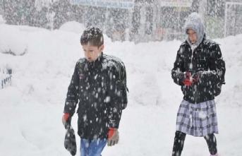 Kar yağışı artıyor! O ilde okullar tatil edildi