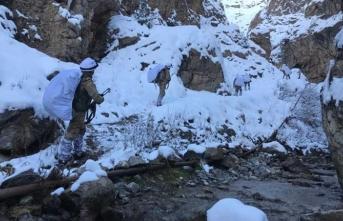 Terör örgütü PKK'ya kış darbesi