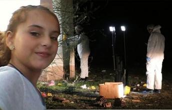 Kırklareli'nde vahşet! Tuğlalı katil aranıyor