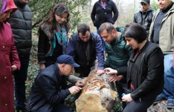 TİKA'dan Gürcü uzmanlara eğitim