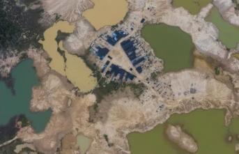 Dünyanın en büyük ormanı yok oluyor!