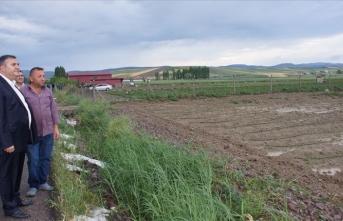 Başkentte yağan dolu ekili arazilere zarar verdi