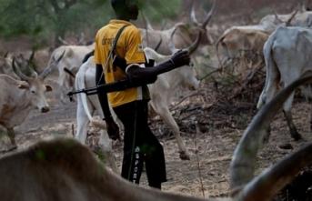 Çad'da silahlı çatışma: Onlarca ölü var