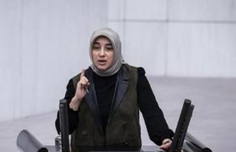 TBMM'de yüksek tansiyon! Özlem Zengin'den HDP'lileri susturan cevap!
