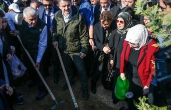 Tarım ve Orman Bakanı Pakdemirli ile Binali Yıldırım, öğretmenler adına fidan dikti