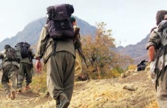 PKK'da büyük panik! Sınırda teröristleri öldürüyorlar