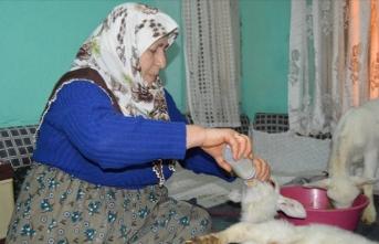 Afyonkarahisar'da kuzuları için yem isteyen yaşlı kadının yüzünü 'vefa ekibi' güldürdü