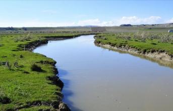 Van Gölü'nün 'incisi' için av yasağı yarın başlıyor