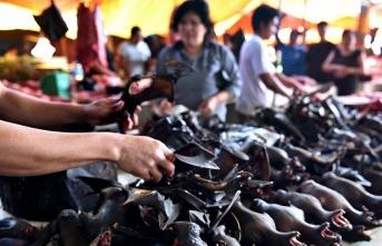 Çin'in başka çaresi kalması: Yemesinler diye 580 TL ödeyecek