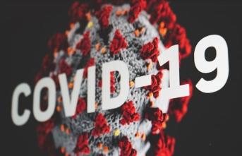 Türk şarkıcı ve oyunculardan BM ve DSÖ'nün Kovid-19 mesajlarının iletilmesine destek