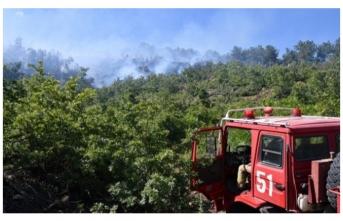 5 hektarlık orman yandıktan sonra söndürülebildi