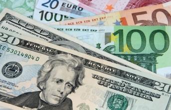 Euro ve dolarda son durum