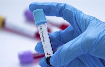 İngiltere Premier Lig'de bir kişide koronavirüse rastlandı