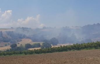 Çanakkale'de çıkan orman yangını rüzgarla yayıldı