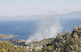 Bodrum'da çıkan orman yangını kontrol altına alındı