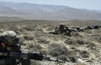 Gri listedeki teröristin etkisiz hale getirildiği operasyonda 2 terörist yakalandı