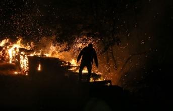 Pendik'te ormanlık alanda çıkan yangın kontrol altına alındı