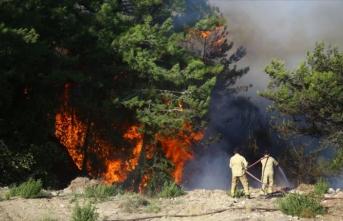 Hatay'daki orman yangını ile ilgili tutuklama kararı