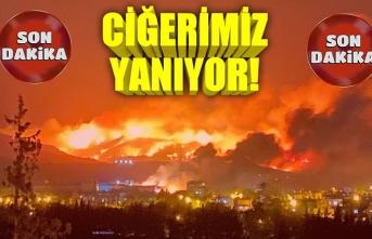 Hatay'daki büyük yangında son durum ne? AFAD'dan flaş açıklama...