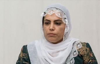 HDP'li Tosun evlatlarını bekleyen annelere hakaret etti