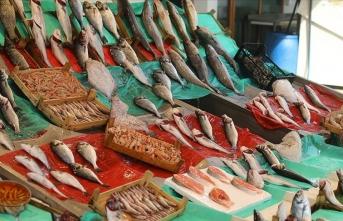 İstanbul'da balık bolluğu esnafın ve vatandaşın yüzünü güldürüyor