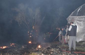 Korkutan yangın! Seralar ve tarım arazileri zarar gördü