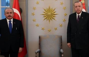 Cumhurbaşkanı Erdoğan TBMM Başkanını kabul etti