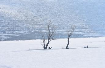 Doğu Anadolu'da kış şartları çetin geçiyor
