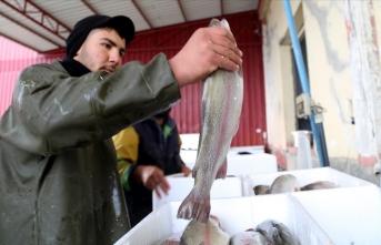 O ilde nehirden çıkan balıklar Avrupa'ya ihraç ediliyor