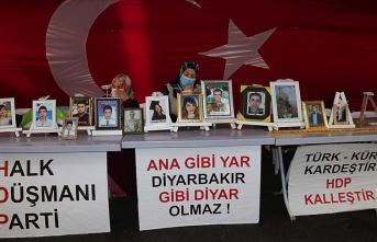 Yüreği yanan annelere HDP'den karalama kampanyası