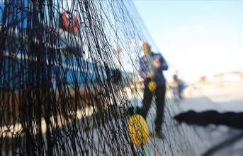 Bakan tarih verdi: Hamsi av yasağı kalkıyor