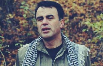 Selahattin Demirtaş'ın PKK'lı kardeşinin kitabı İBB raflarında