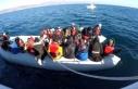 Cibuti'de göçmen cinayeti