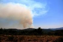 Suriye sınırındaki orman yangını sürüyor!