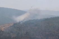 Kastamonu'daki orman yangını iki gündür sürüyor