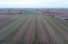 Verimli topraklar çifçiyi mutlu ediyor