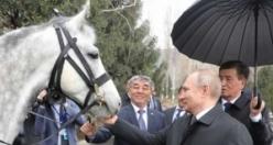 İşte Putin'in 'dört ayaklı ordusu'