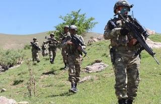 Şırnak'ta 5 PKK'lı etkisiz hale getirildi