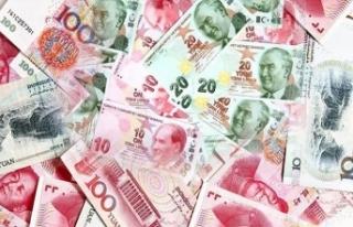 Çin'den Türkiye'nin milli para teklifine...